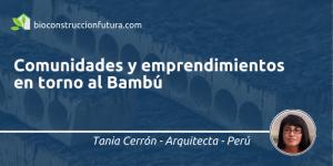 Bambu Tania Cerron